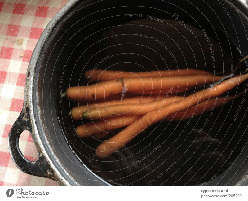 Classic root vegetable Food Vegetable Nutrition Organic produce Vegetarian diet Italian Food Pot Healthy Eating Cooking Kitchen Fitness Authentic Simple