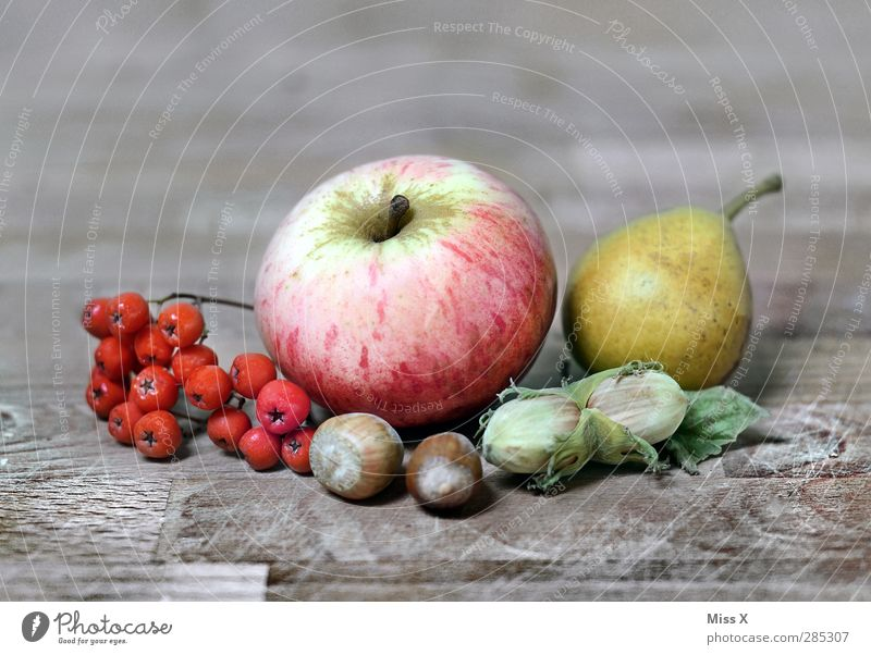 autumn life Food Fruit Apple Nutrition Thanksgiving Autumn Plant Leaf Healthy Wooden table Pear Rawanberry Berries Hazelnut Still Life Autumnal Decoration