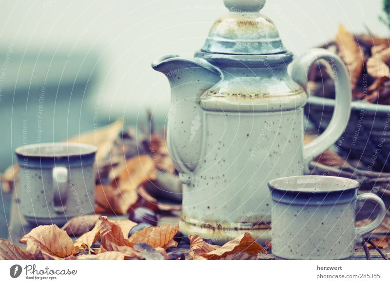 Would you like some tea? Tea Crockery Well-being Relaxation To enjoy Blue Brown Gray Moody tea time still life Autumn Colour photo Subdued colour Exterior shot