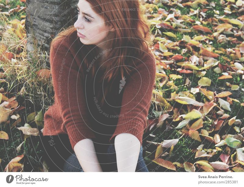 woman autumn. Feminine Face 1 Human being 18 - 30 years Youth (Young adults) Adults Environment Nature Autumn Leaf Meadow Tree trunk Park Skirt Sweater