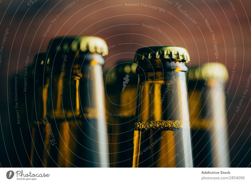 Group of beer bottles shoot with selective focus Alcoholic drinks ale Beer Beverage Blur Bottle Brewery Brick Cold Cool (slang) Craft (trade) Dark Drinking Foam