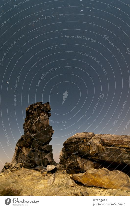 star trails Nature Landscape Sky Cloudless sky Night sky Stars Summer Rock Mountain Harz pre-resin Infinity Tripod Colour photo Subdued colour Exterior shot