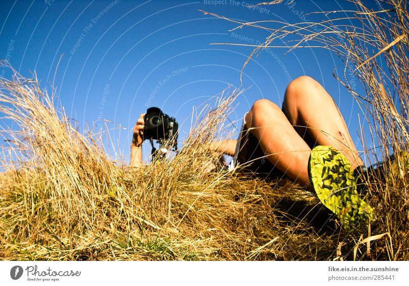 a bed in the cornfield* Leisure and hobbies Androgynous Arm Hand Legs Feet 1 Human being Environment Nature Sky Cloudless sky Summer Autumn Beautiful weather