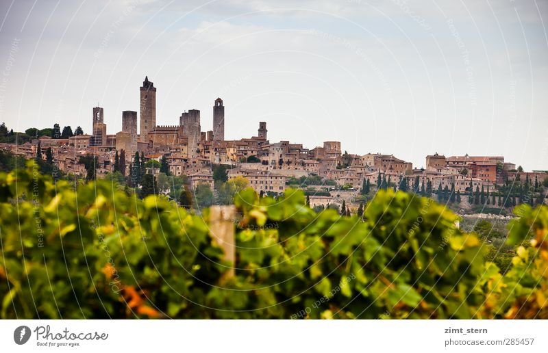 Vineyards before S.G. Wine Vacation & Travel Tourism Trip Far-off places Nature Landscape Sky Autumn San Gimignano Tuscany Italy Village Skyline Tower Building