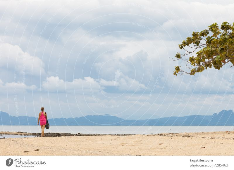 Woman Nature Vacation & Travel Water Ocean Beach Landscape Coast Freedom Sand Travel photography Wild Tourism Idyll Bay Card