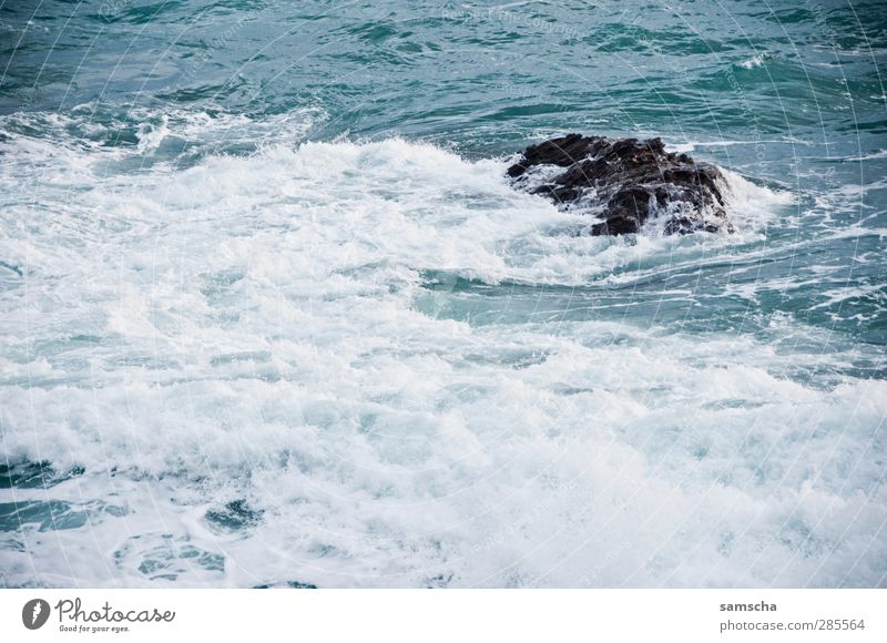 swell Ocean Waves Nature Water Coast Wet Wild Adventure Sea water Surfing Swell Undulation Wave action Rock Rocky coastline White crest Wave break