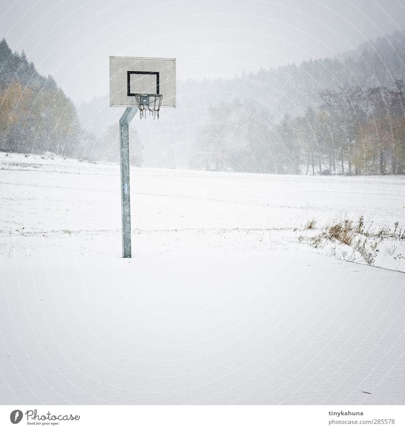 game over Ball sports Basketball Basketball arena Landscape Winter Storm Snowfall Meadow Forest Cold Gloomy Loneliness End Boredom Subdued colour Exterior shot