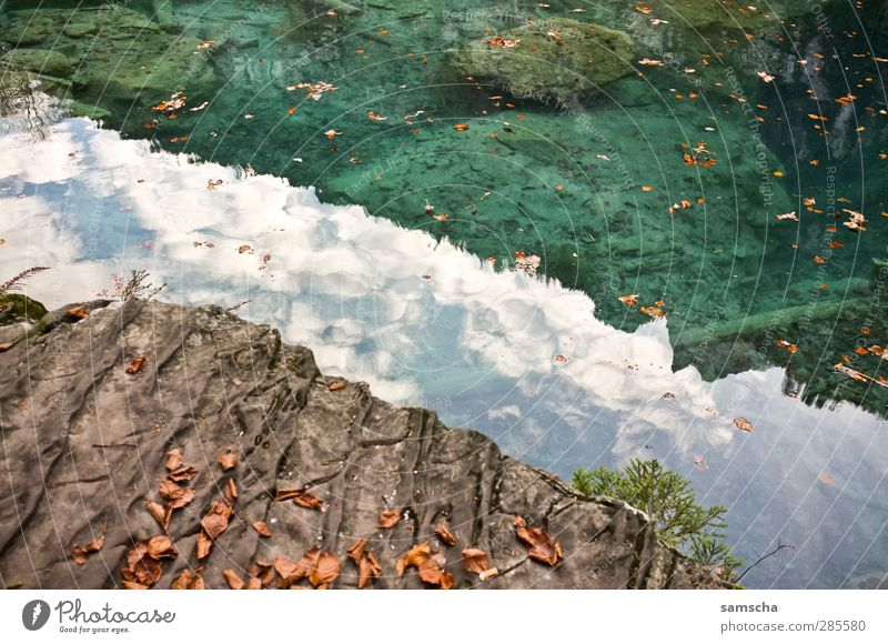 reflections Fishing (Angle) Nature Landscape Water Lakeside Pond Fluid Wet Adventure Shore of a pond Mountain lake Forest lake Autumn leaves Autumnal weather