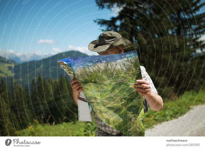 Human being Sky Nature Vacation & Travel Blue Summer Tree Landscape Forest Adults Mountain Gray Brown Masculine Leisure and hobbies Tourism