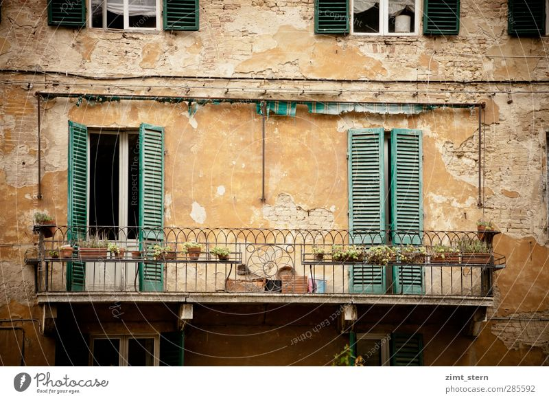 Balconies mediterranean Vacation & Travel Tourism Trip Living or residing House (Residential Structure) Balcony Plant Siena Tuscany Italy Town Downtown Facade