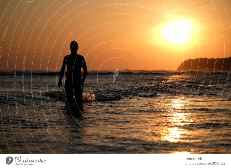 Human being Nature Youth (Young adults) Man Water Young man Ocean Eroticism Animal 18 - 30 years Lifestyle Adults Warmth Sports Coast Swimming & Bathing