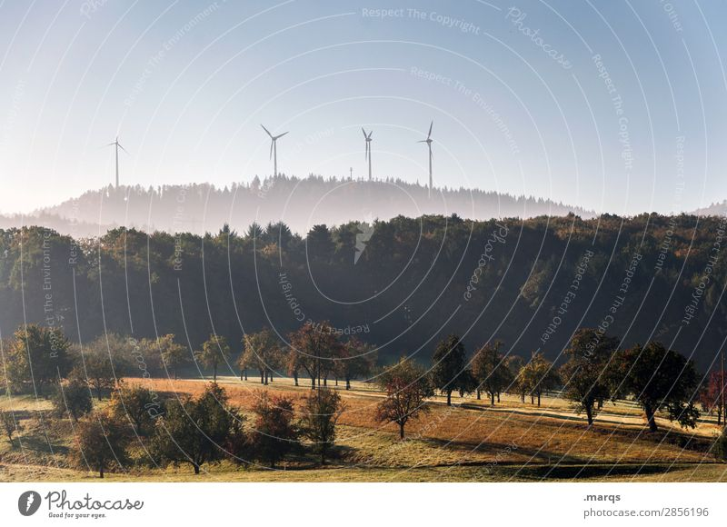 Nature & Technology Energy industry Renewable energy Pinwheel Landscape Cloudless sky Autumn Tree Meadow Forest Hill Moody Sustainability Future Colour photo