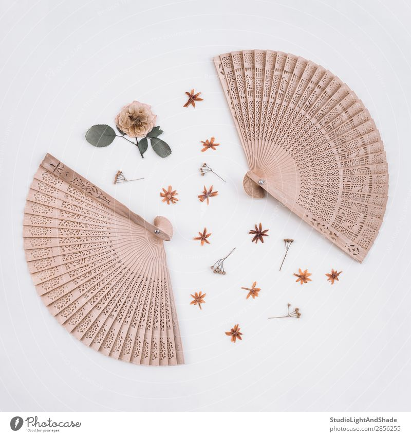 Elegant wooden fans and dried flowers Design Beautiful Decoration Craft (trade) Art Nature Plant Flower Rose Blossom Wood Natural Retro Wild Pink White Colour