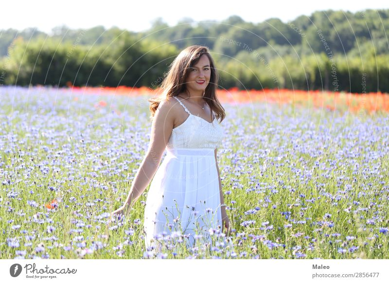 Portrait of a young woman on a cornflower field pretty Blue Girl Hair and hairstyles Happy Lifestyle Nature portrait Woman Young woman Field Model Spring Summer