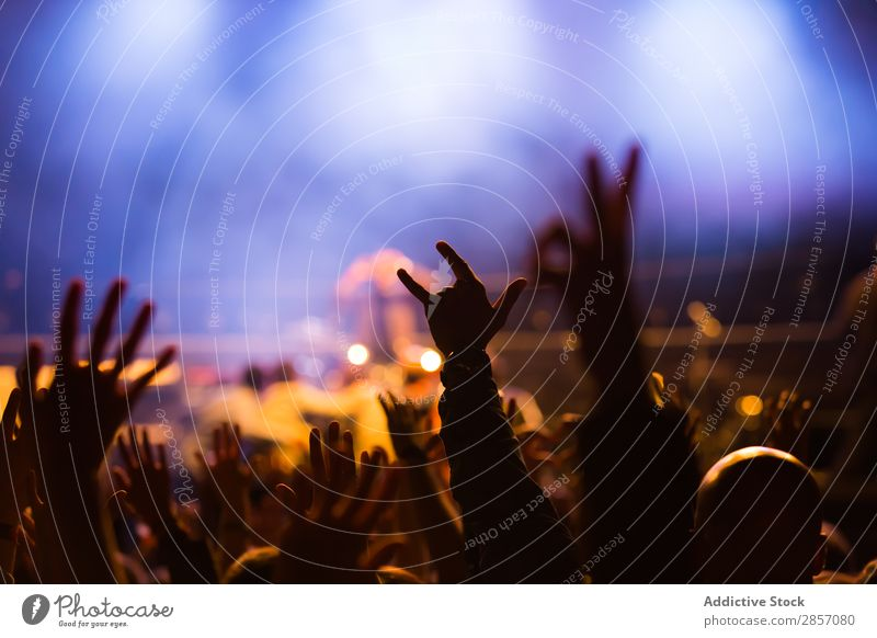 Crowd at concert Acoustic Audience Background picture Band bass Beat Feasts & Celebrations Applause Concert crowd Dance Disco Event Festival Fog Light Live