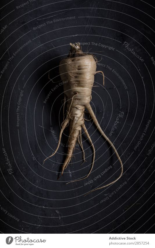 Fresh parsnip on dark background Agriculture antioxidant Background picture Bulb Dark Diet flavor Food Green Healthy Herbs and spices Ingredients Leaf Natural