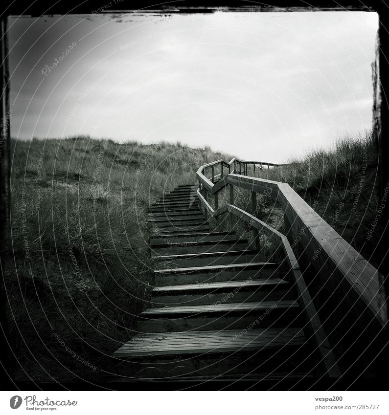 stairway to beach Trip Adventure Far-off places Freedom Hiking Nature Landscape Plant Earth Sand Sky Clouds Spring Climate Wind Grass Wild plant Hill Peak Coast