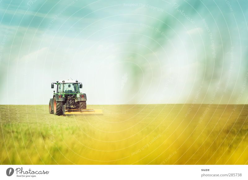 farm work Work and employment Agriculture Forestry Machinery Technology Environment Nature Landscape Elements Earth Sky Horizon Summer Beautiful weather Grass