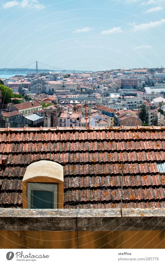 City Esthetic Roof Skyline Downtown Capital city Old town Portugal Lisbon