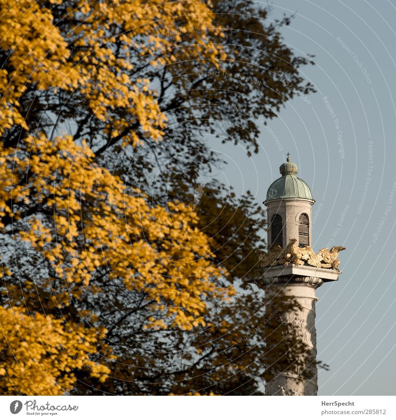 Autumn now also at Karlsplatz Beautiful weather Tree Leaf Park Vienna Austria Capital city Downtown Church Manmade structures Building Architecture