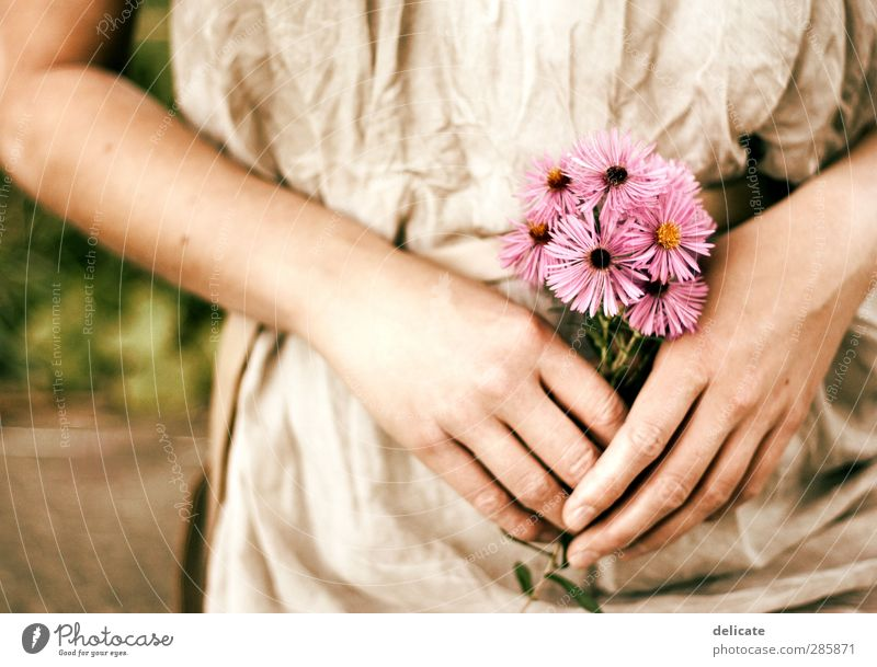 Human being Woman Nature Youth (Young adults) Hand Plant Colour Flower Loneliness Adults Environment Feminine Blossom Garden 18 - 30 years Dream