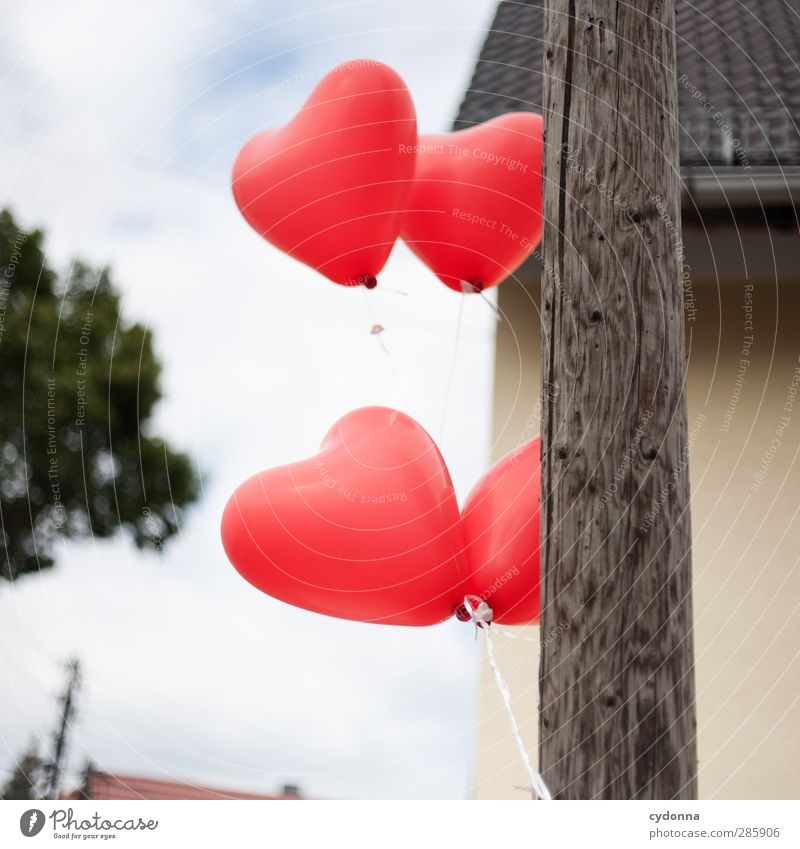 heartily Lifestyle Feasts & Celebrations Wedding Birthday Environment Sky Wind Tree Village House (Residential Structure) Movement Relationship Uniqueness