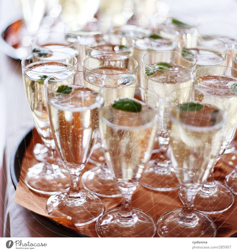 Champagne for everyone! Beverage Alcoholic drinks Sparkling wine Prosecco Champagne glass Lifestyle Luxury Party Event Feasts & Celebrations Wedding Experience
