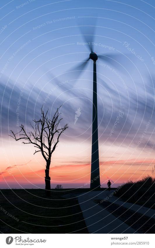 Human being Sky Man Tree Adults Horizon Energy industry Future Technology Wind energy plant Dynamics Machinery Pinwheel Advancement Renewable energy