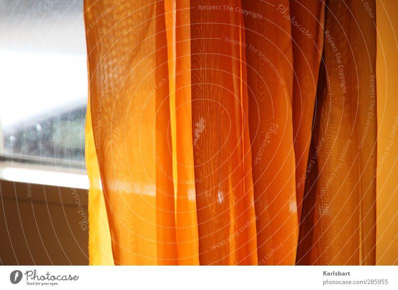 Orange peel. Lifestyle Living or residing Flat (apartment) Interior design Decoration Room Wall (barrier) Wall (building) Window Line Stripe Net