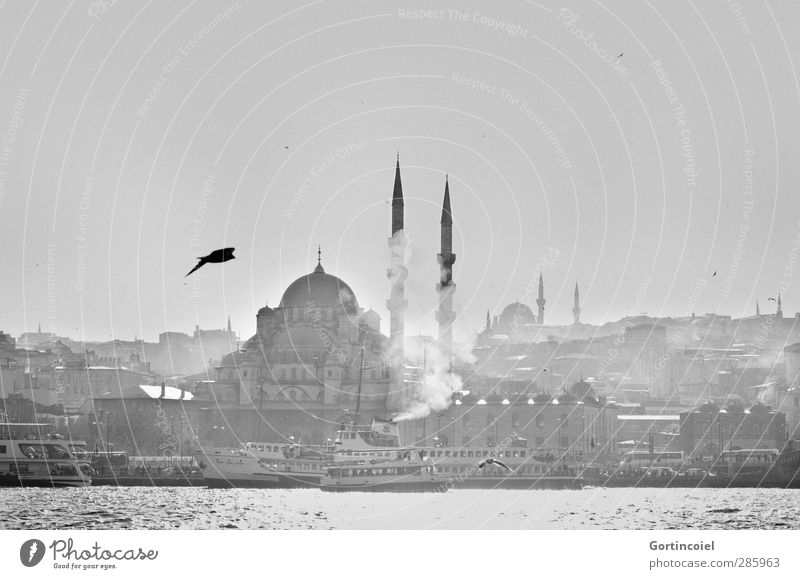 Old City Ocean Coast Building Watercraft Historic Manmade structures Bay Tourist Attraction Turkey Famousness Istanbul Mosque House of worship Minaret