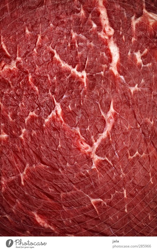 steak Food Meat Steak Beef Joint of beef Roastbeef Nutrition Delicious Red Blood Mediocre Raw Fresh English marbled Intensive stock rearing Murder horse meat