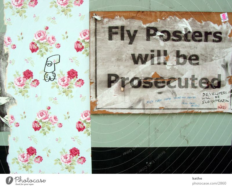 fly poster Poster Flower Green Mint green Text Rose Characters graffiti