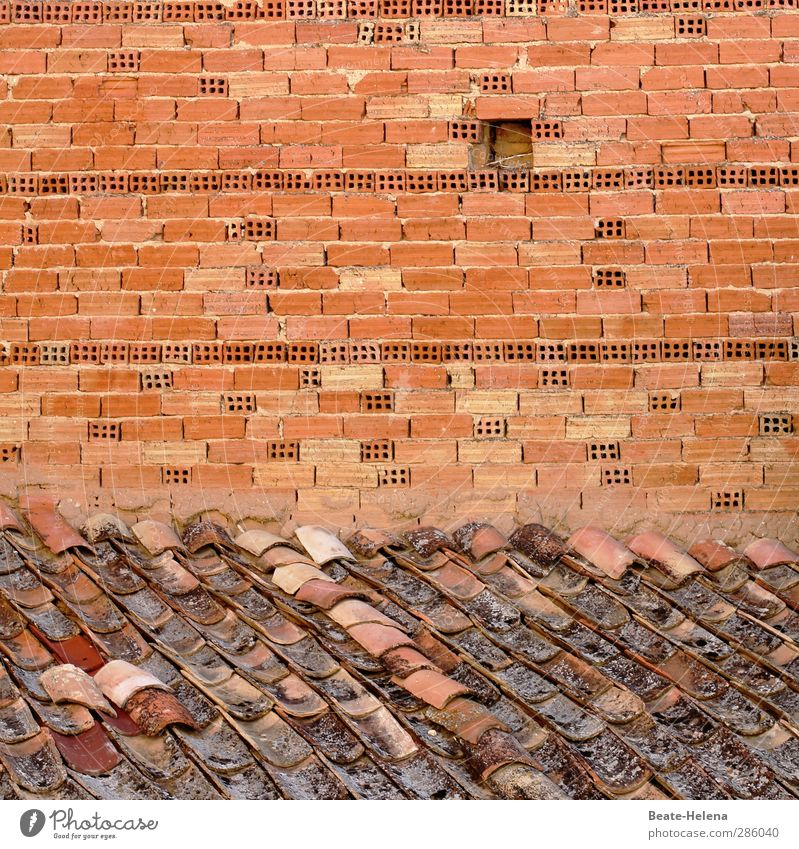 when one comes after the other Living or residing House (Residential Structure) House building Craftsperson Wall (barrier) Wall (building) Roof Stone