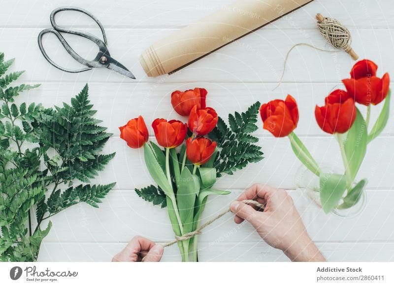 Hands preparing a Red tulips arrangement Arrangement Flower Bouquet bunch Floral Florist Love Natural Blossom leave Gift Romance romantic Scissors