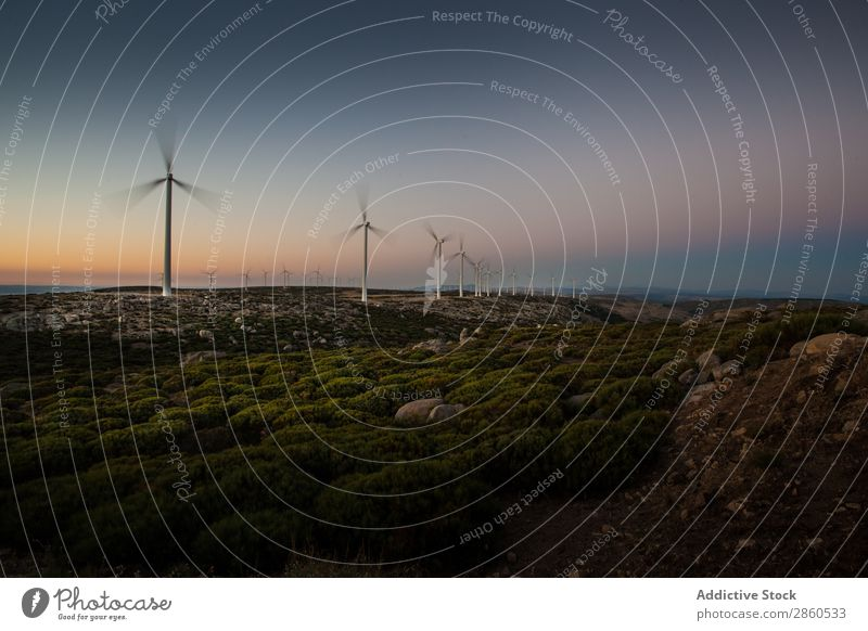 Windmills at sunset Alternative Clean eco Electricity Energy Environment Future green energy grren Landscape Mill Nature Renewable Resource Sunset turbine