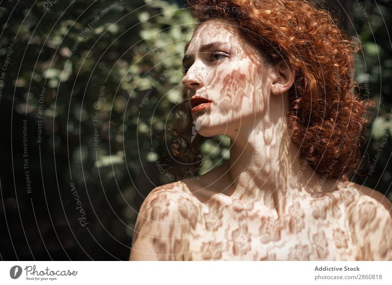Sensual model in shadows of lace Woman Shadow Lace To enjoy Neck Chest Skin tender Delicate Soft Beauty Photography Red-haired Curls Youth (Young adults)
