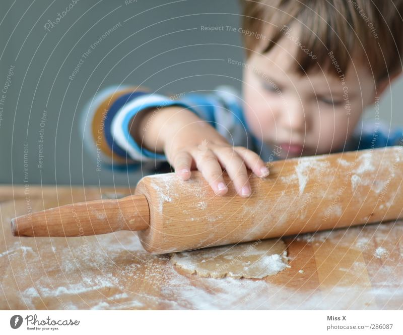 Human being Child Christmas & Advent Hand Infancy Food Nutrition Cute Sweet Cooking & Baking Curiosity Toddler Delicious Baked goods Noodles Dough