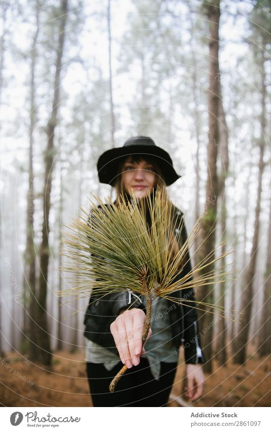 Woman showing evergreen branch Forest Nature Vacation & Travel Branch Evergreen Indicate Tourism Landscape Hiking Beautiful Hat Park Adventure Green Wild