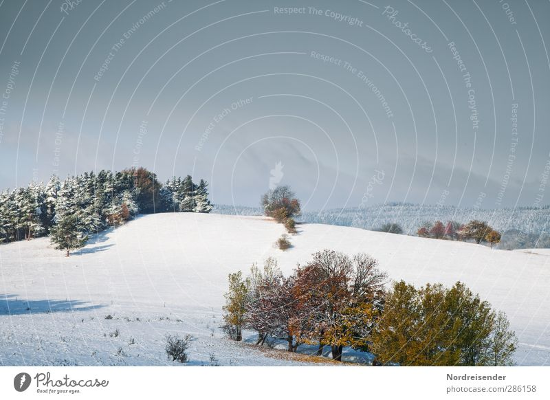 Sky Nature Blue Clouds Calm Winter Landscape Relaxation Forest Cold Autumn Snow Moody Ice Weather Field