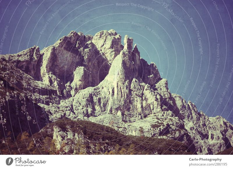 South Tyrolean nature Nature Landscape Elements Sky Autumn Beautiful weather Rock Alps Mountain Authentic Fantastic Firm Gigantic Large Natural Gray Power Brave