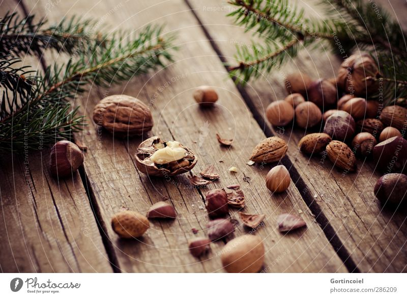 Christmas & Advent Feasts & Celebrations Brown Food Nutrition Delicious Organic produce Vegetarian diet Crunchy Wooden table Walnut Fir branch Pensive Hazelnut