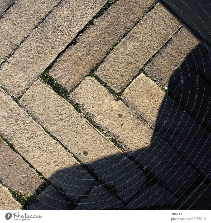 broken Human being Observe Shadow Stone Lanes & trails Herringbone Colour photo