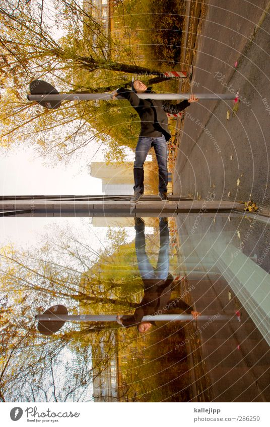 Human being Man City Tree Adults Street Autumn Car Window Sports Masculine Body Signs and labeling High-rise Stand Perspective Fitness