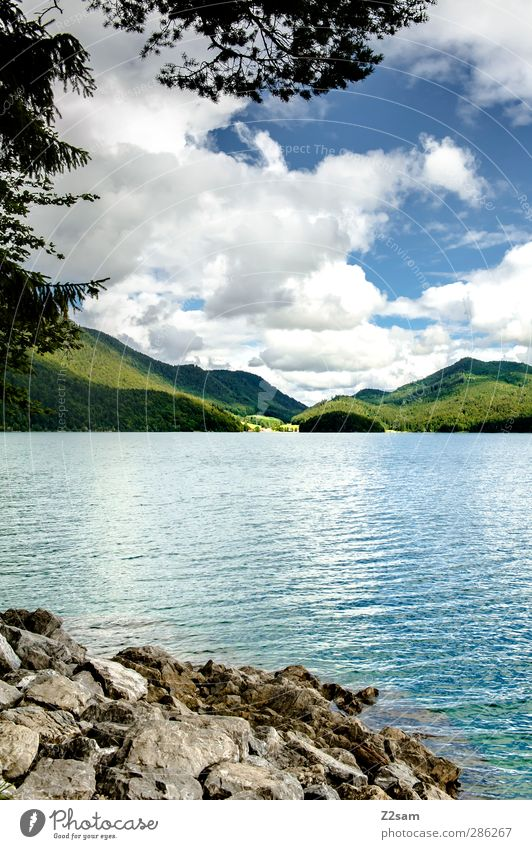 Walchensee Vacation & Travel Environment Nature Landscape Sky Clouds Summer Rock Mountain Lakeside Natural Loneliness Relaxation Idyll Sustainability Calm