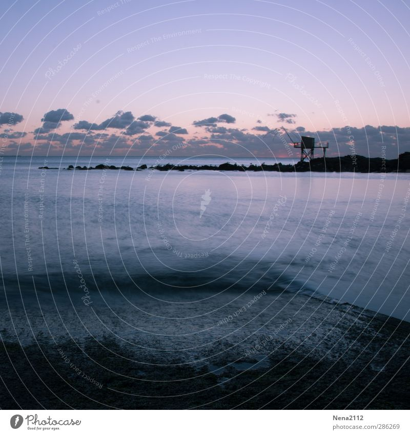 Good night. Nature Landscape Air Water Sky Clouds Night sky Weather Beautiful weather Waves Coast Ocean Blue Violet Long exposure pêcherie Column pilotis Shed