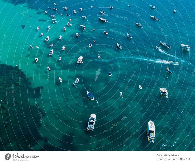 Different motorboats sailing in sea Watercraft Lagoon Sailing Yacht Vacation & Travel Motorboat Tourism Tropical Ocean Luxury Blue Summer Coast Nature Sailboat