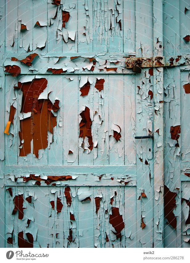 When the leaves fall Door Wood Metal Old Brown Orange Pink Black Turquoise Flake off Derelict Morbid Ravages of time Tracks Crack & Rip & Tear Colour Copy Space