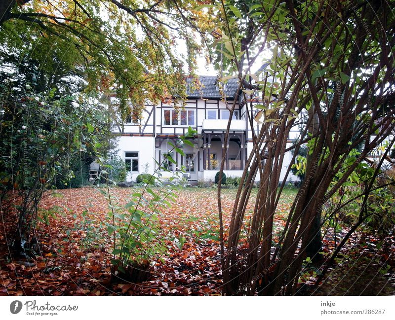 the secret garden II Living or residing Flat (apartment) House (Residential Structure) Garden Half-timbered house Autumn Tree Grass Bushes Leaf Meadow Deserted