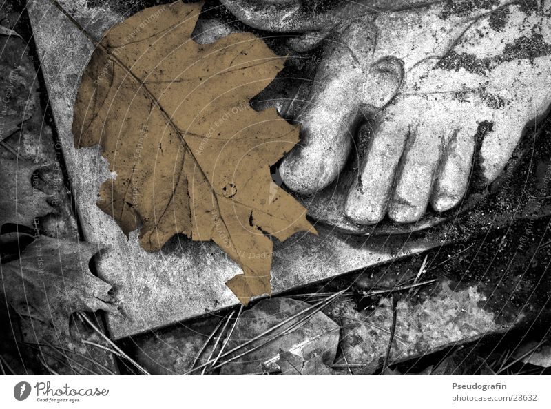 Calm Leaf Dark Emotions Death Autumn Sadness Stone Feet Brown Gloomy Grief Dry Creepy Pain Statue