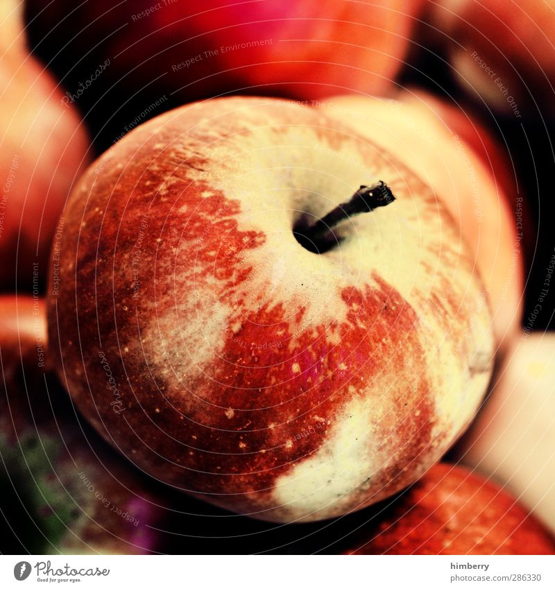 apple Food Fruit Nutrition Eating Lunch Picnic Organic produce Vegetarian diet Diet Fast food Style Design Healthy Healthy Eating Fitness Nature Delicious Sour